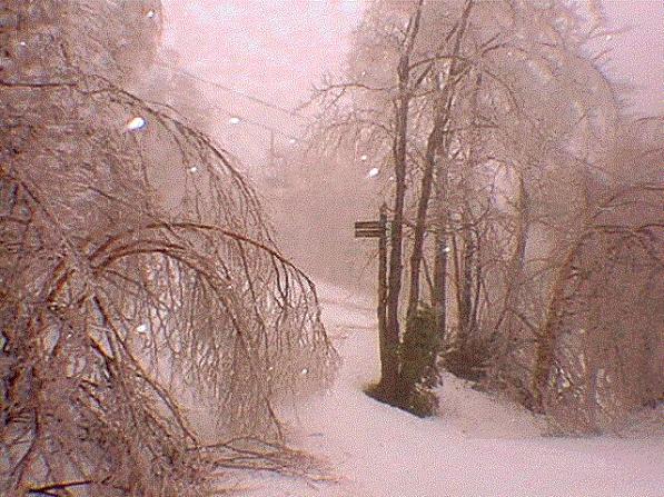 mrg-icestorm_jan98_12